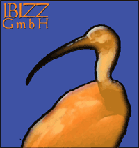 Ibizz GmbH