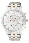 Citizen-AT2305-81A